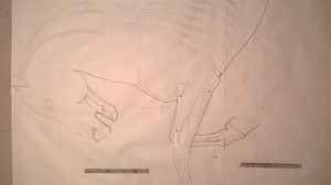 Front drawing / plane for Fame Satue Horse